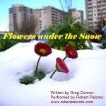flowers-under-the-snow-Robert Palomo